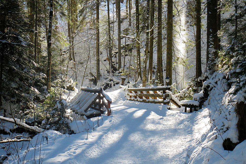 Bachweg-Winter-012-(2)-bearbeitet